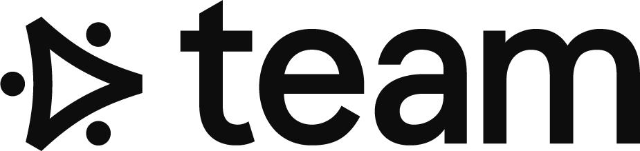 Team Consulkting Logo